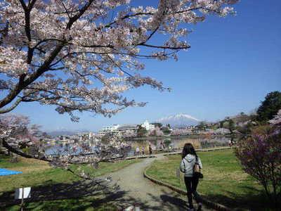 4月24日岩手山.JPG