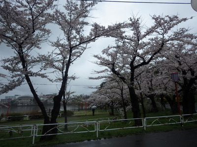 4月27日.JPG