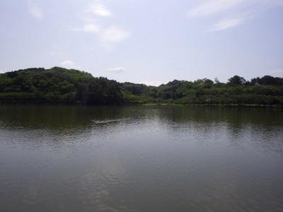 今日の高松.JPG