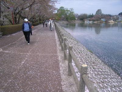 4月29日図書館前.JPG
