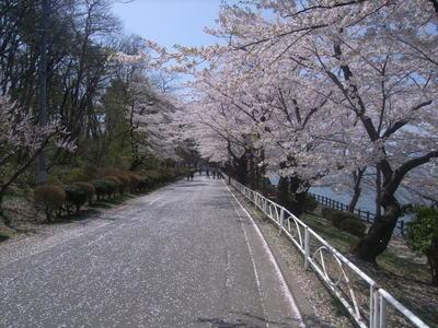 4月29日直線道路.JPG
